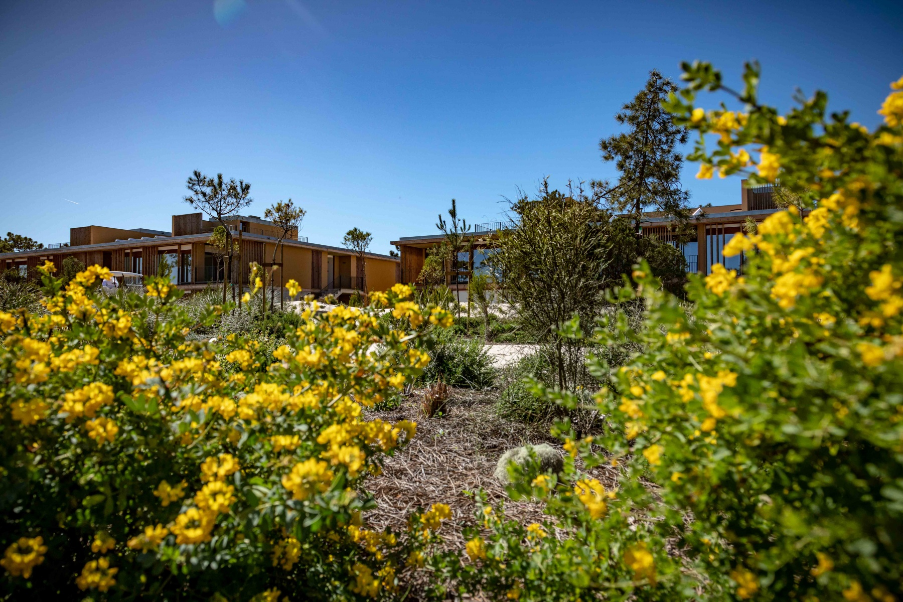 Pestana Troia Eco-Resorts & Residences (2)